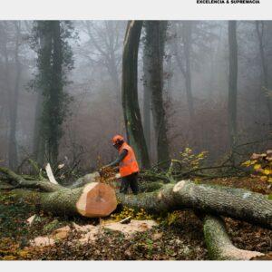 Catálogo Proteção Florestal TecForest